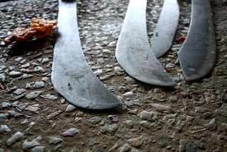 Butcher's Knives